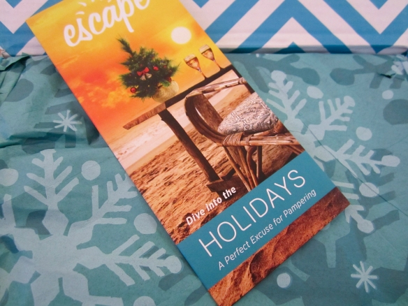 Escape Monthly Holiday Limited Edition Box December 2013 Review
