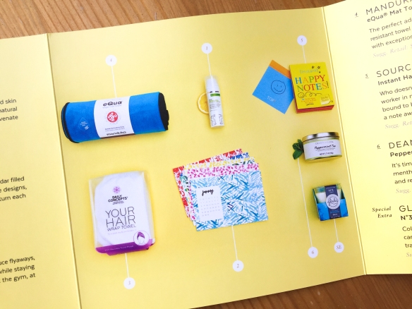 POPSUGAR Must Have January 2017 Box Review plus February Spoiler!
